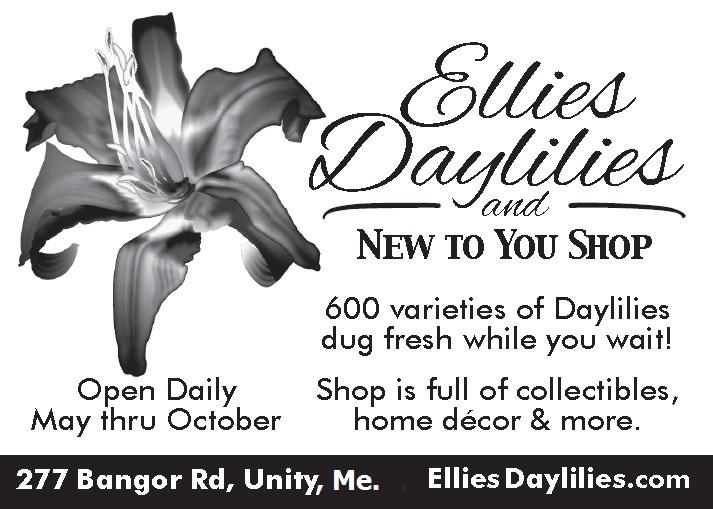 Ellies Daylilies Logo
